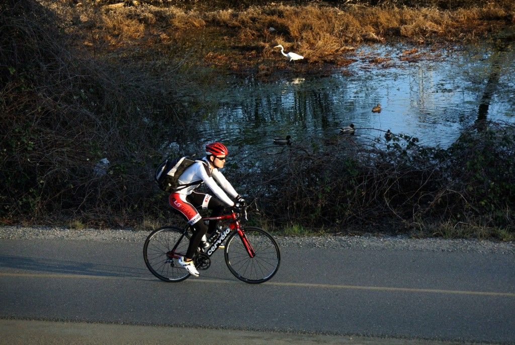 Commuting along the American River. Photo by Tim Reese